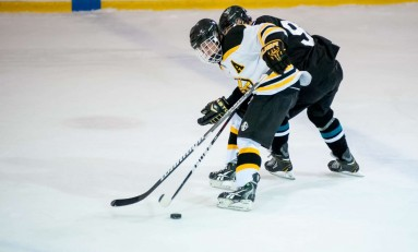 Hockey Rebounds against Life University