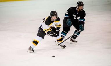Hockey Coasts by Coastal Carolina in 11-4 Win