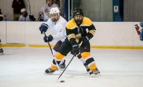 Hockey sweeps Florida State