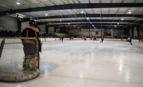 Hockey defeats rival UGA