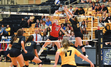 Volleyball splits weekend at home, Brown sets personal best