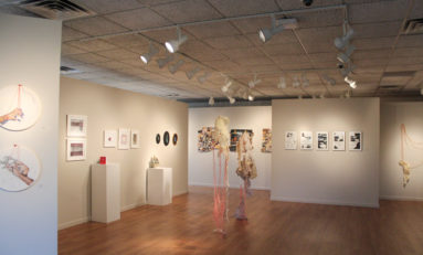 Fine arts gallery showcases seniors