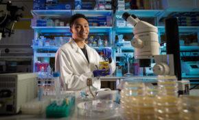 Undergraduate receives esteemed Goldwater Scholarship for gene research