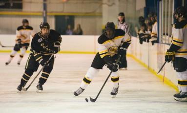 Hockey Sweeps USF