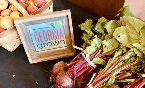 Best of KSU: Farmer's Market, Geek Week win best on-campus event