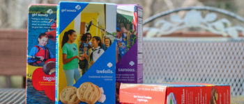 OPINION: Students should consider impact of Girl Scout cookies on environment, health