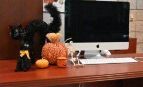 How to decorate for Halloween on a budget