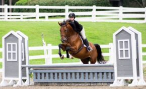 Equestrian club welcomes new members for learning, competition